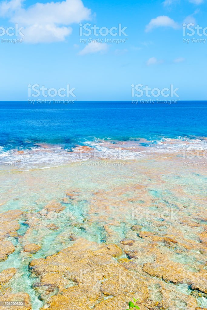 Tropical colors of coral reef, sea and sky stock photo