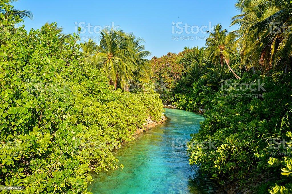 tropical creek in Maldives stock photo