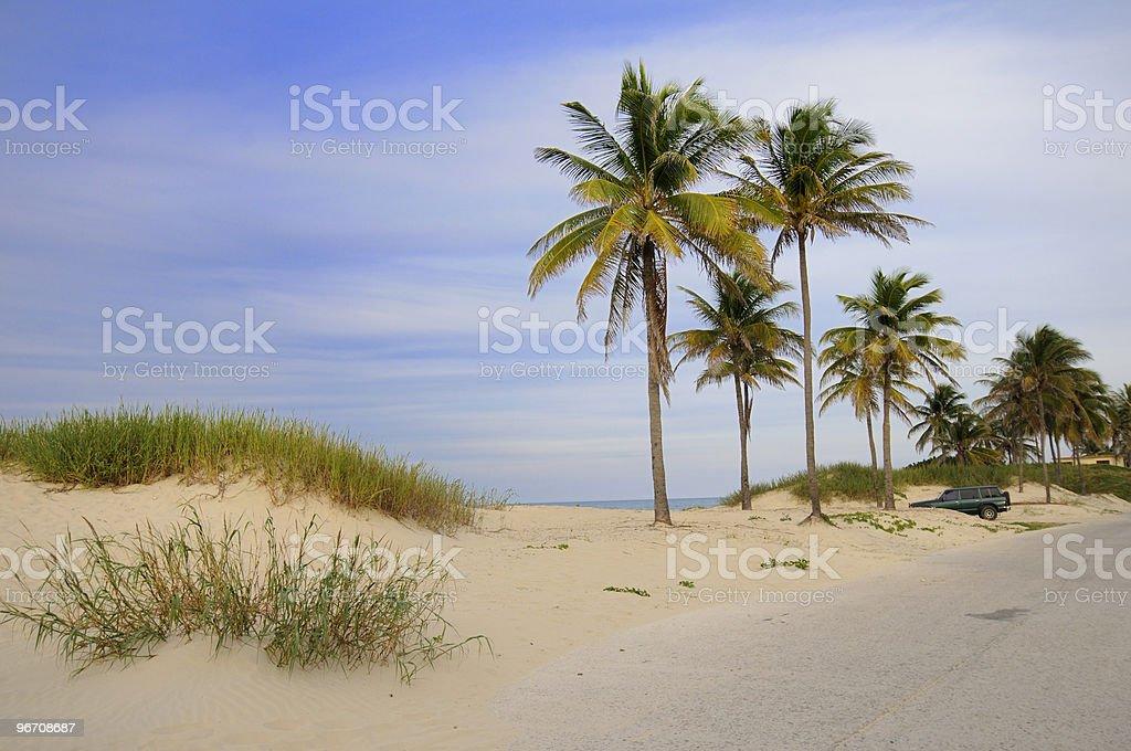 Tropical cuban beach stock photo