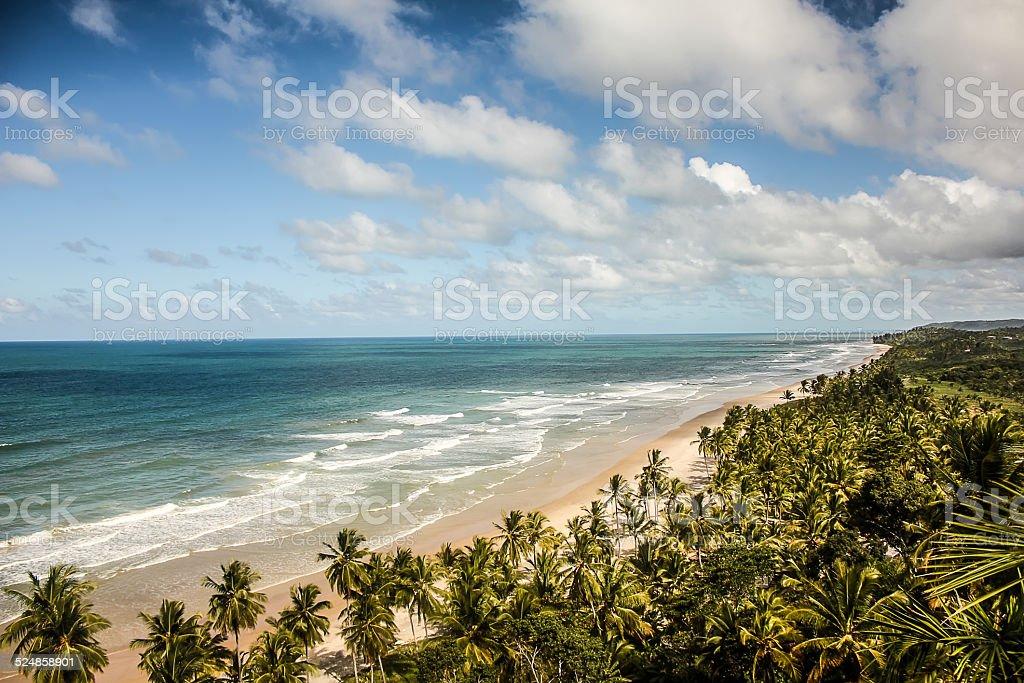 Tropical Deserted Beach in Bahia, Brazil stock photo