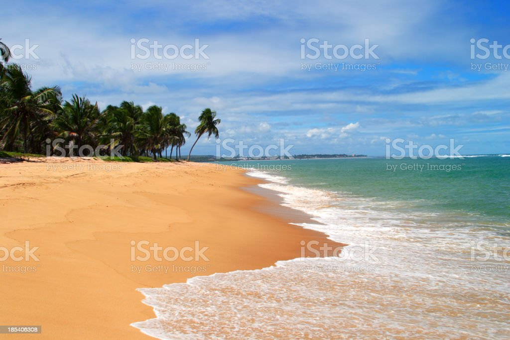 Tropical dream (Brazil) royalty-free stock photo