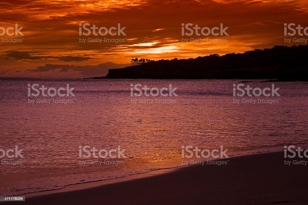 Tropical Dreamscape stock photo