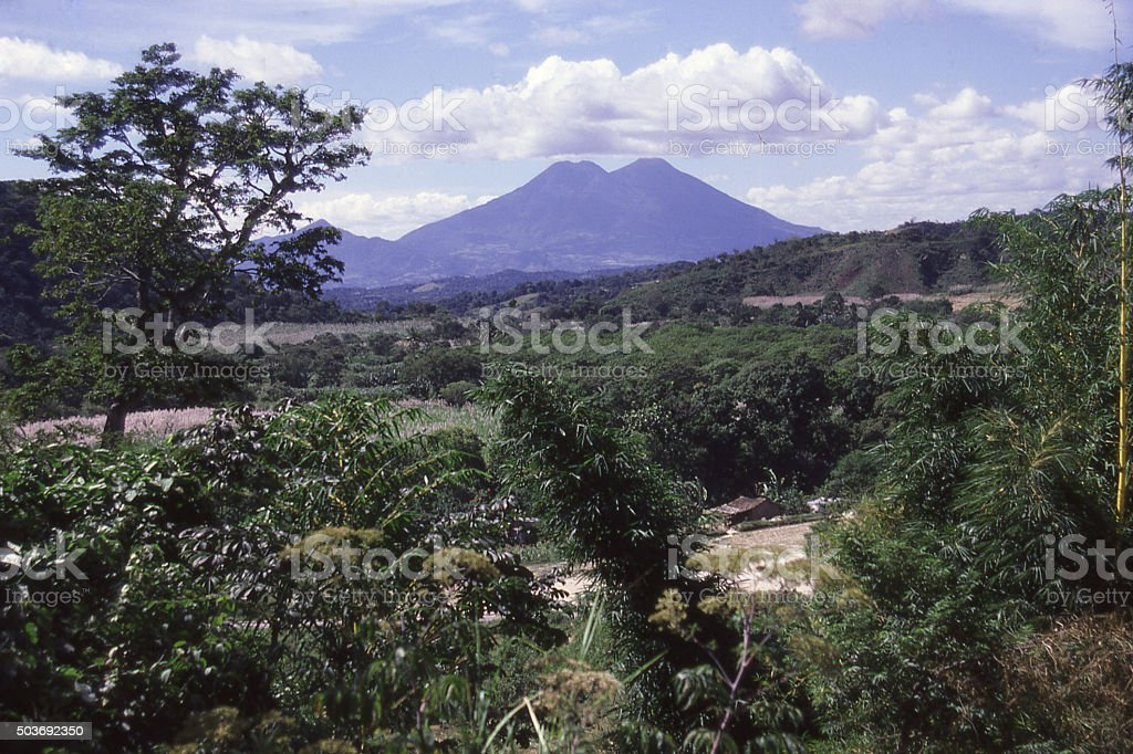 Tropical dry Pacific Forest  volcanic Pacific coastal Guatemala Central America stock photo
