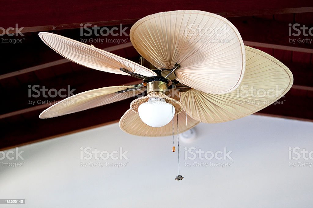 Tropical electric fan an ceiling stock photo