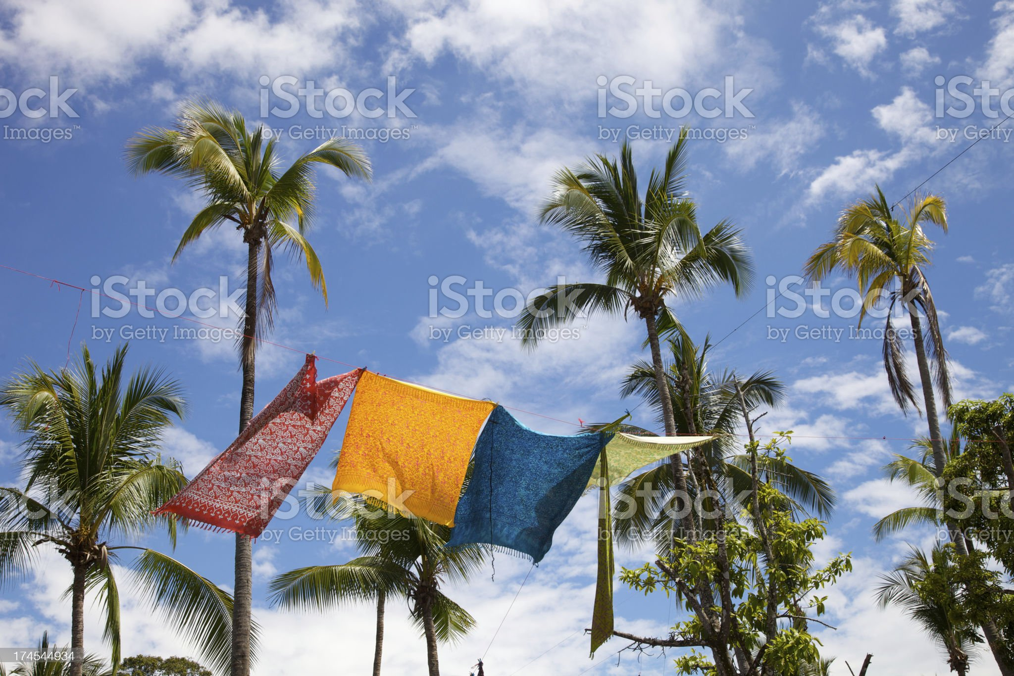 Tropical Fabrics in Breeze with Palms royalty-free stock photo