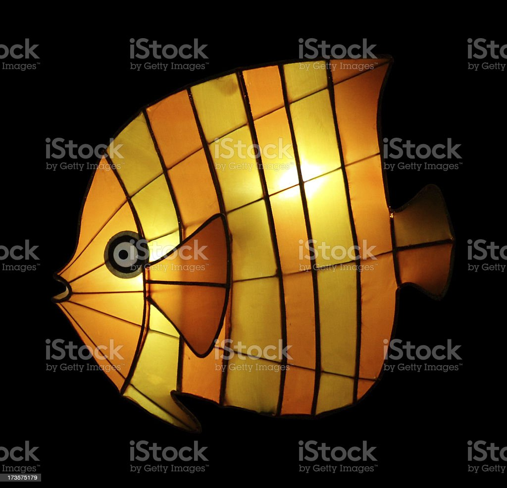Tropical Fish Lantern (with clip path) royalty-free stock photo