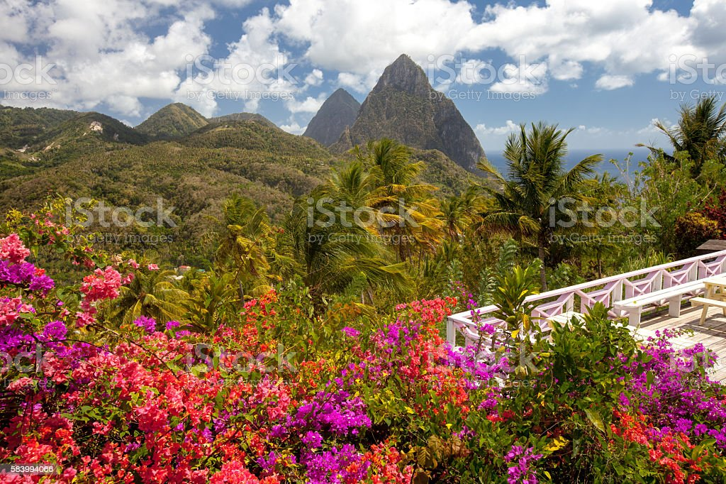 Tropical flowers, Piton mountains on Caribbean island of St Lucia stock photo