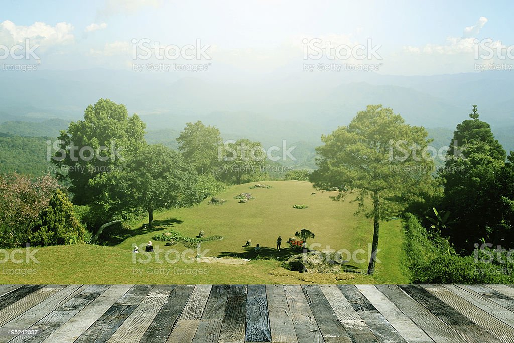 Tropical forest above a wooden floor stock photo