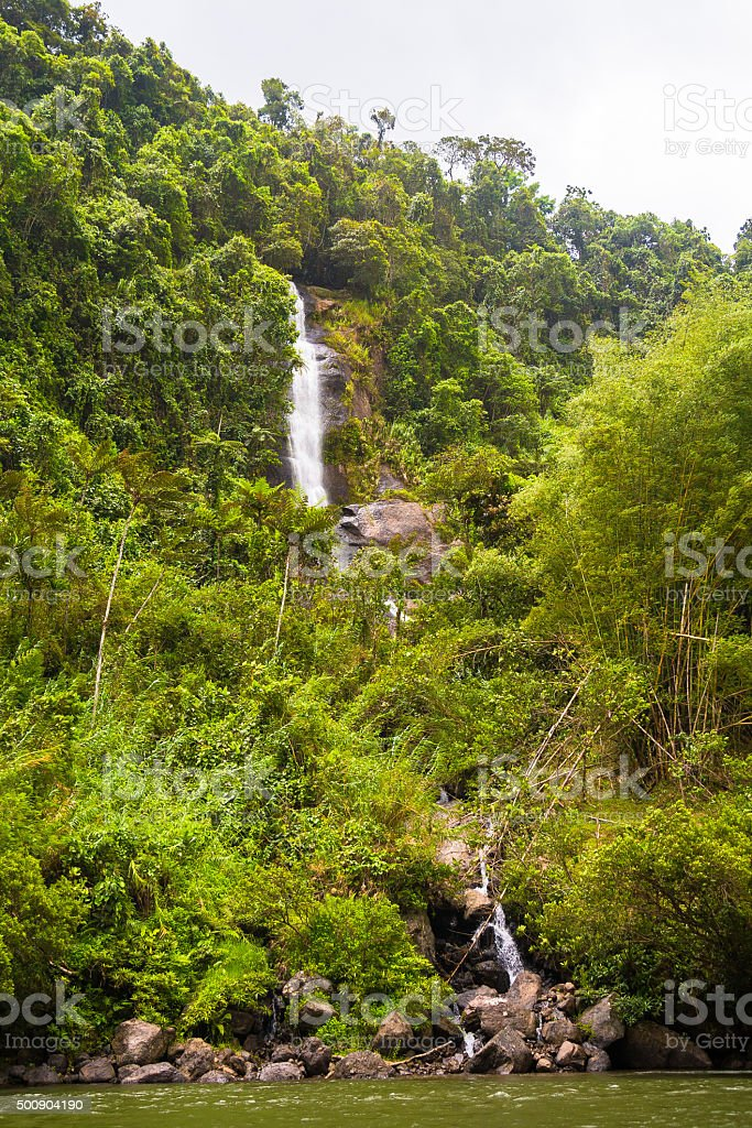 Tropical Forest Waterfall stock photo