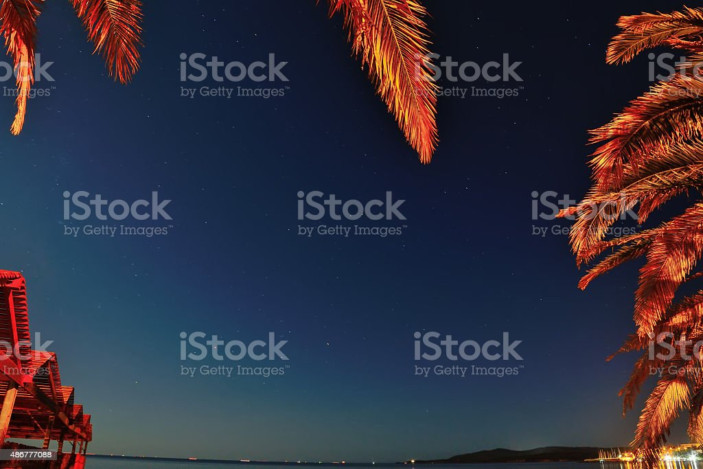 tropical frame on a starry night stock photo