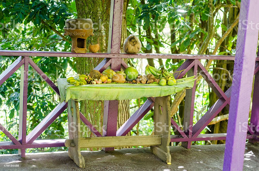 tropical fresh fruits laid out on table in nature park stock photo