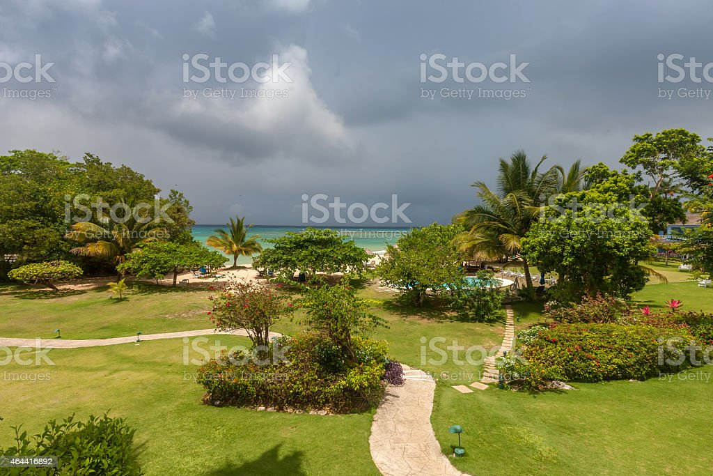 tropical garden with flowers and road to beach stock photo