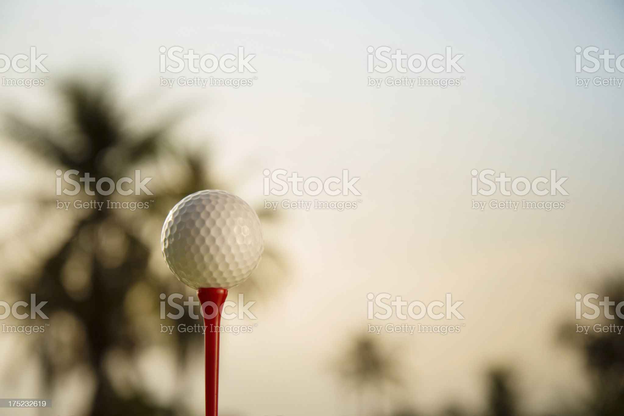 Tropical Golf royalty-free stock photo