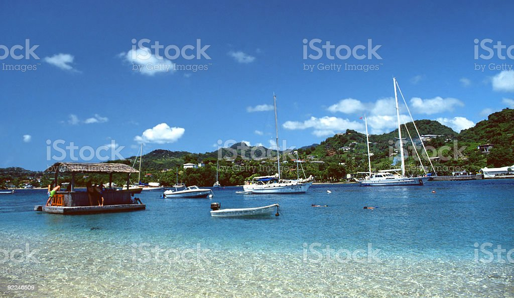 Tropical Haven in Harbor stock photo