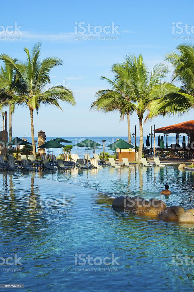 Tropical Hotel Pool, Pacific Ocean, Palm Trees stock photo
