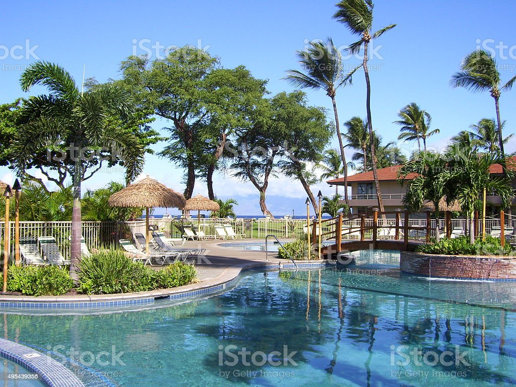 tropical hotel pool stock photo