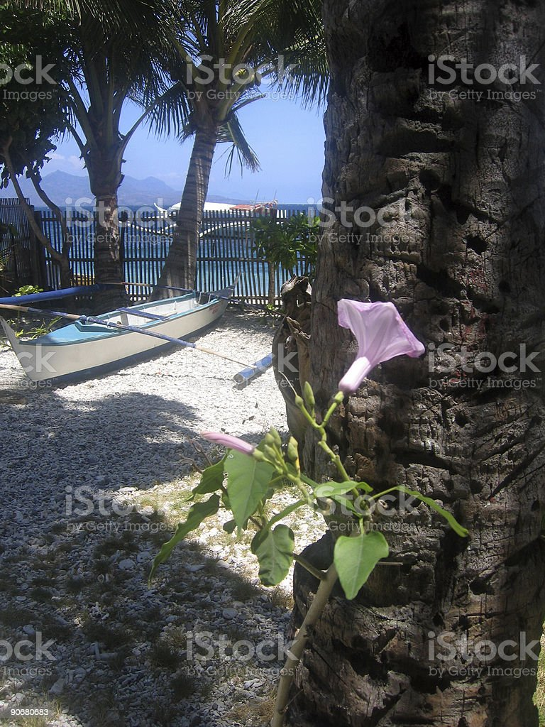 tropical island beach garden sabang royalty-free stock photo