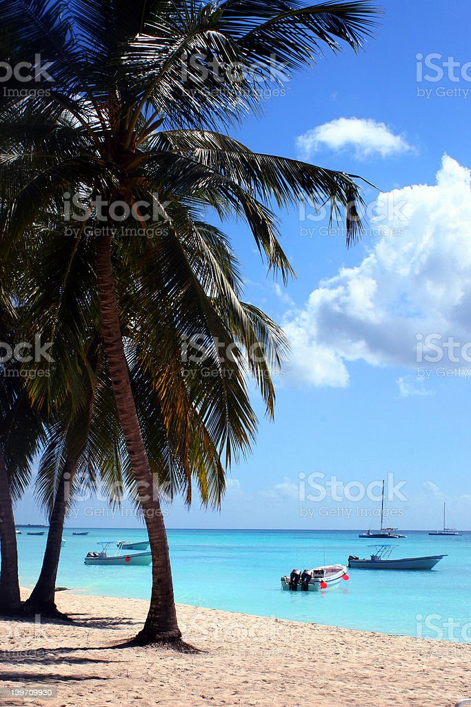 tropical island beach royalty-free stock photo