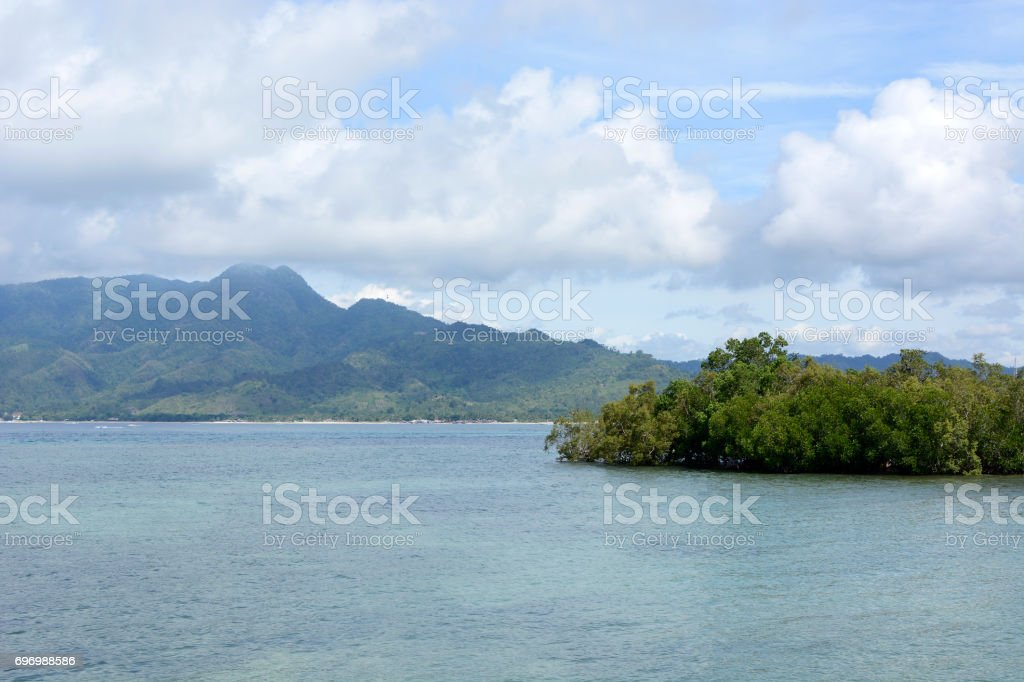 Tropical Island coast trees, grasses vegetation on blue sea, blue cloudy sky stock photo