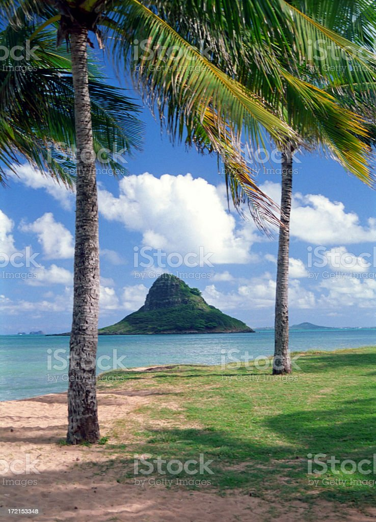 Tropical Island Framed by Palm Trees stock photo