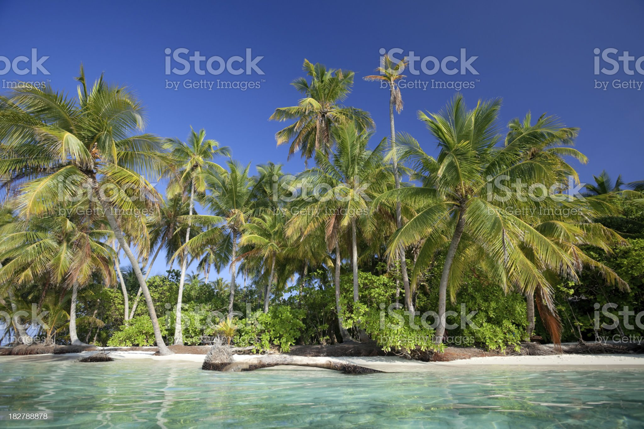 tropical island from sea view royalty-free stock photo