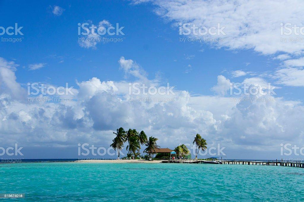 Tropical Island Landscape - Goff's Caye, Belize stock photo