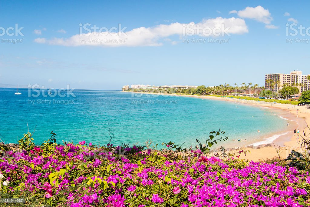 Tropical Island Paradise stock photo