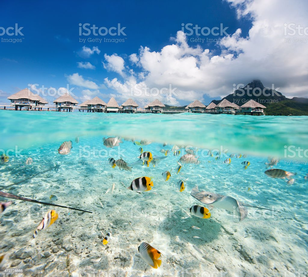 Tropical island under and above water stock photo