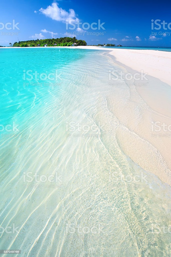 Tropical island with sandy beach and palm trees. stock photo