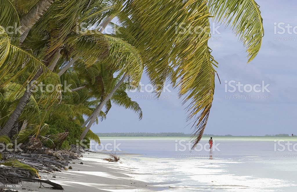 tropical island-coastline stock photo