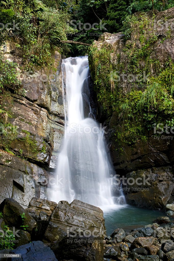 Tropical Jungle Waterfall stock photo