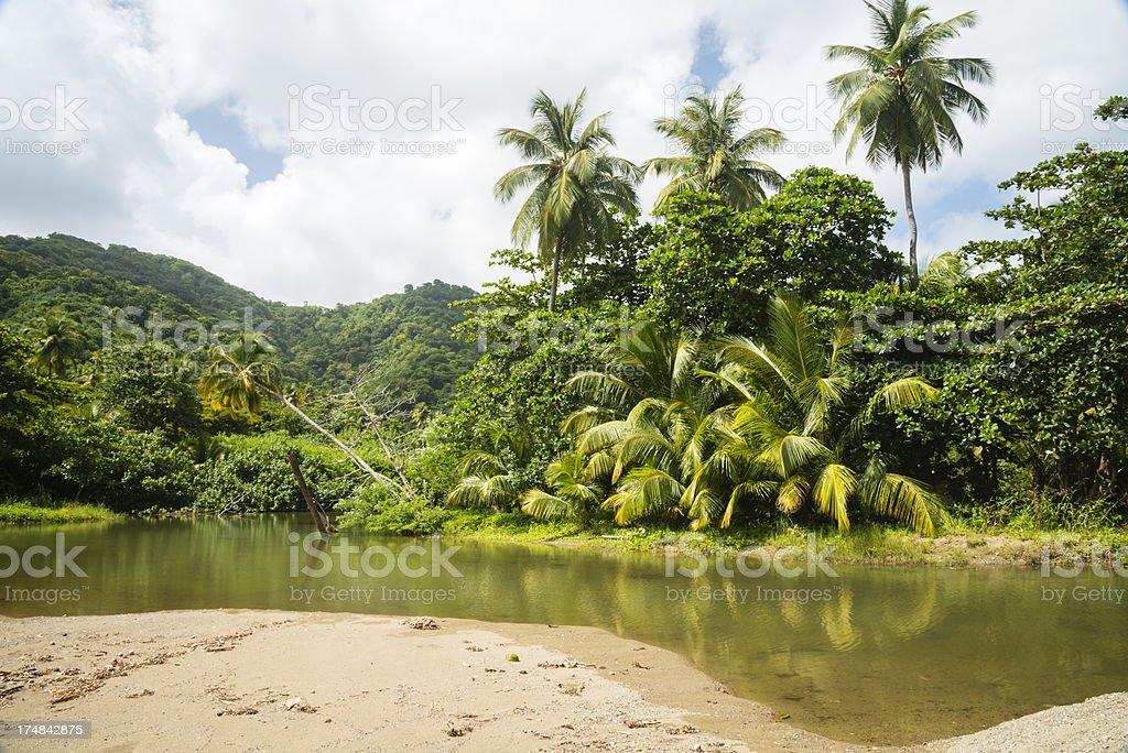 Tropical Lagoon North Tobago royalty-free stock photo