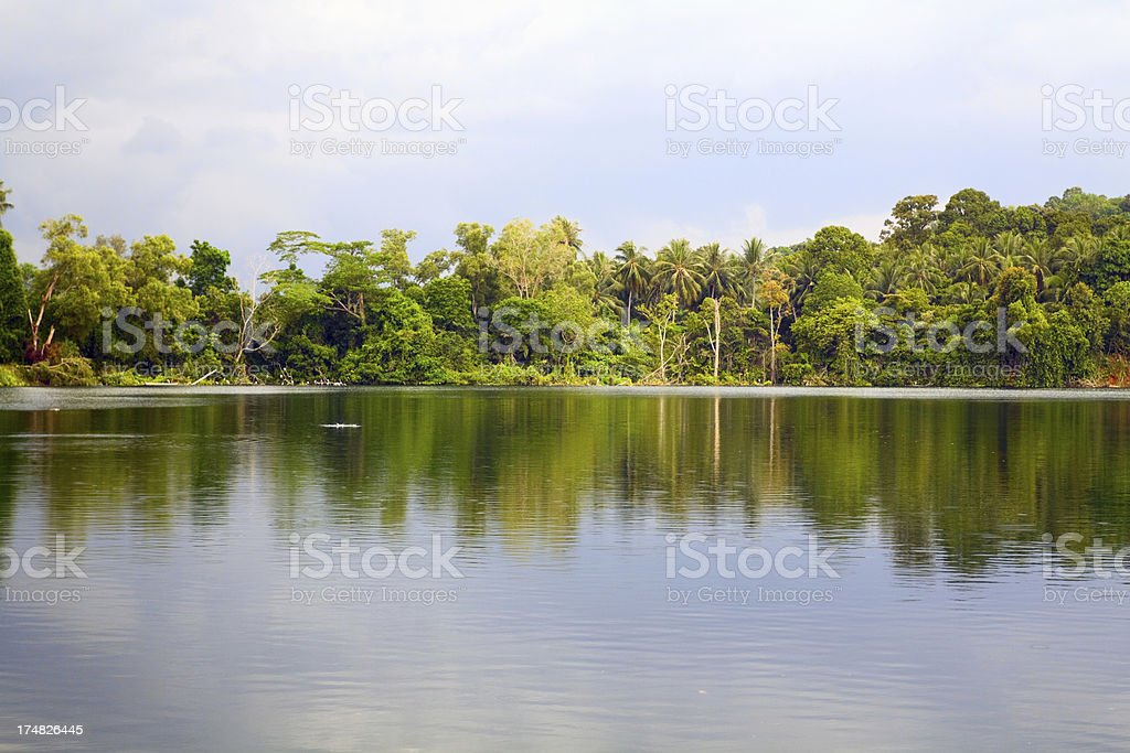 Tropical lake and rainforest stock photo