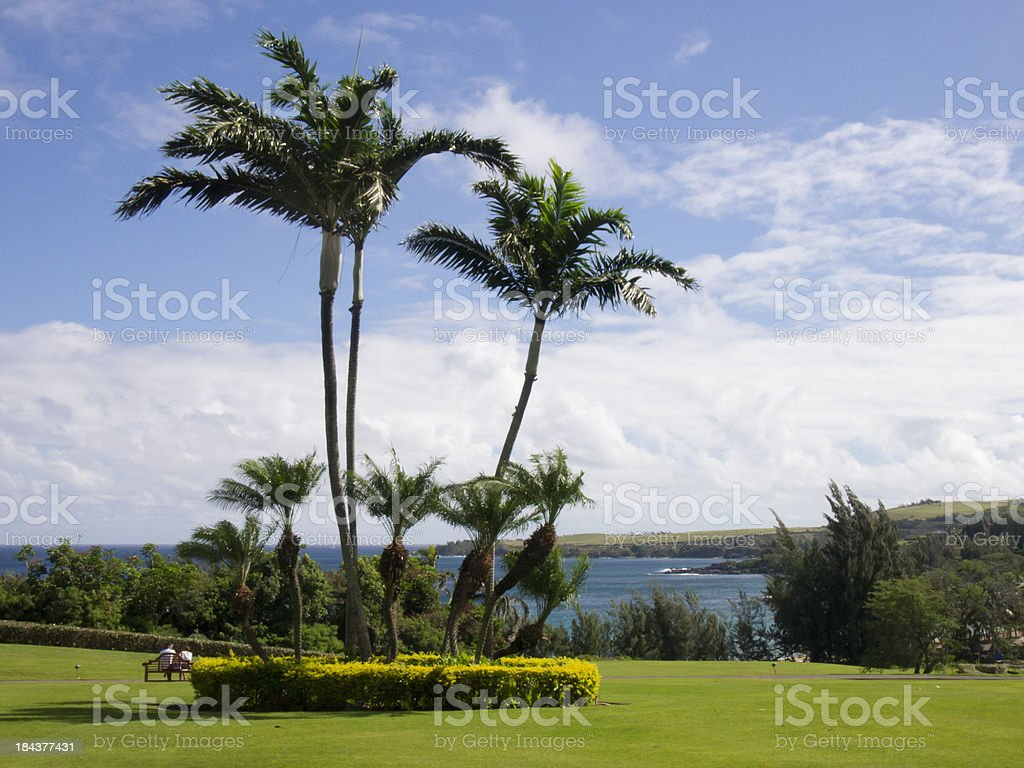 Tropical Lawn Overlooks Rocky Ocean Point royalty-free stock photo