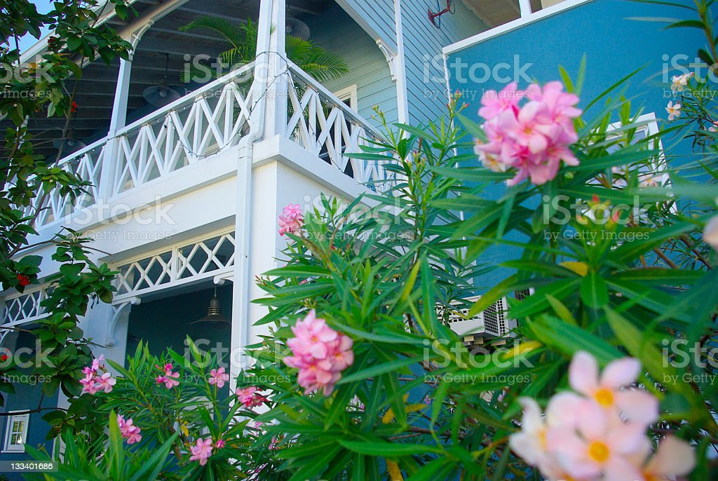 tropical living architecture and flower garden stock photo