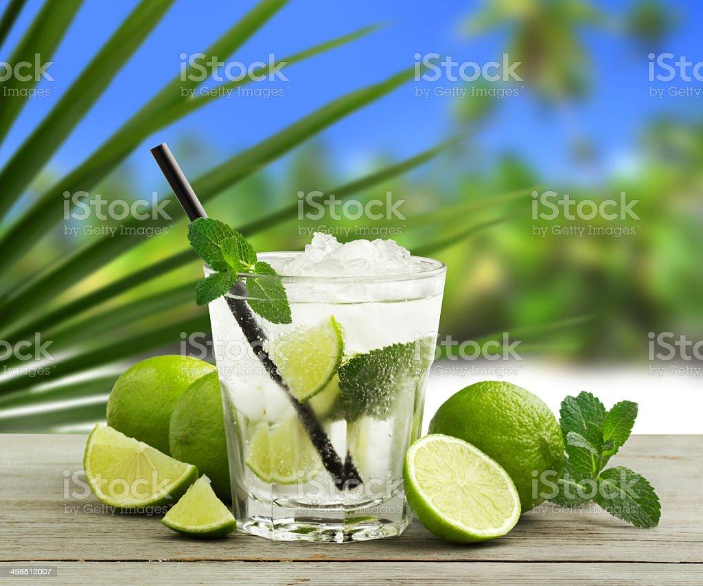tropical mojito stock photo
