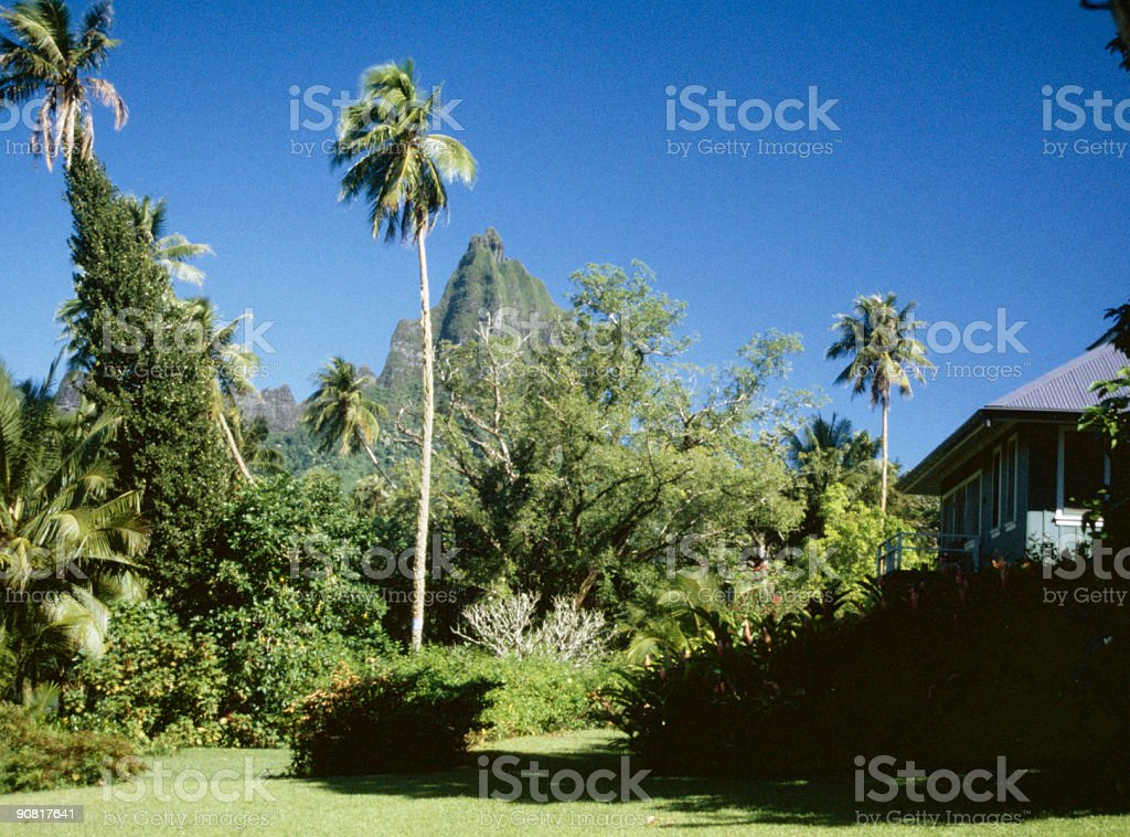 Tropical mountain Hawaii style cottage stock photo