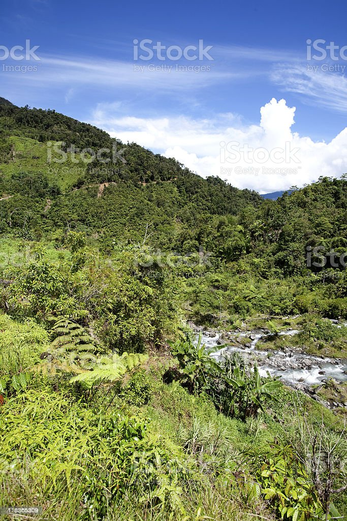Tropical Mountain Landscape royalty-free stock photo