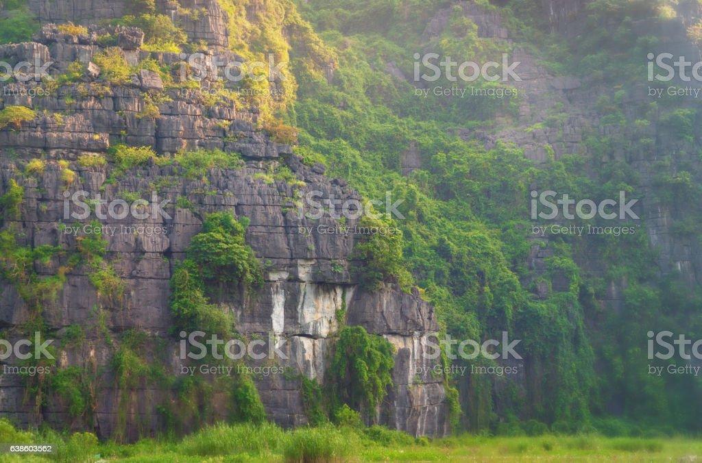 Tropical Mountain,Vietnam stock photo
