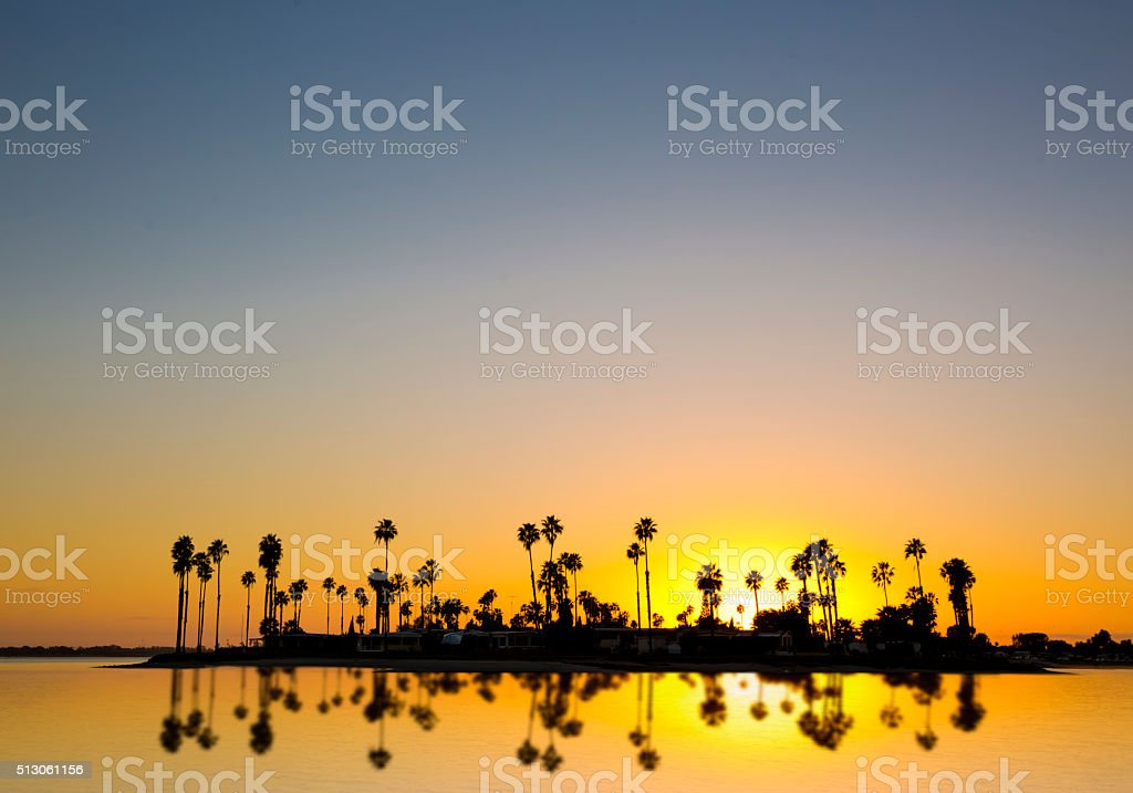 Tropical Oasis stock photo