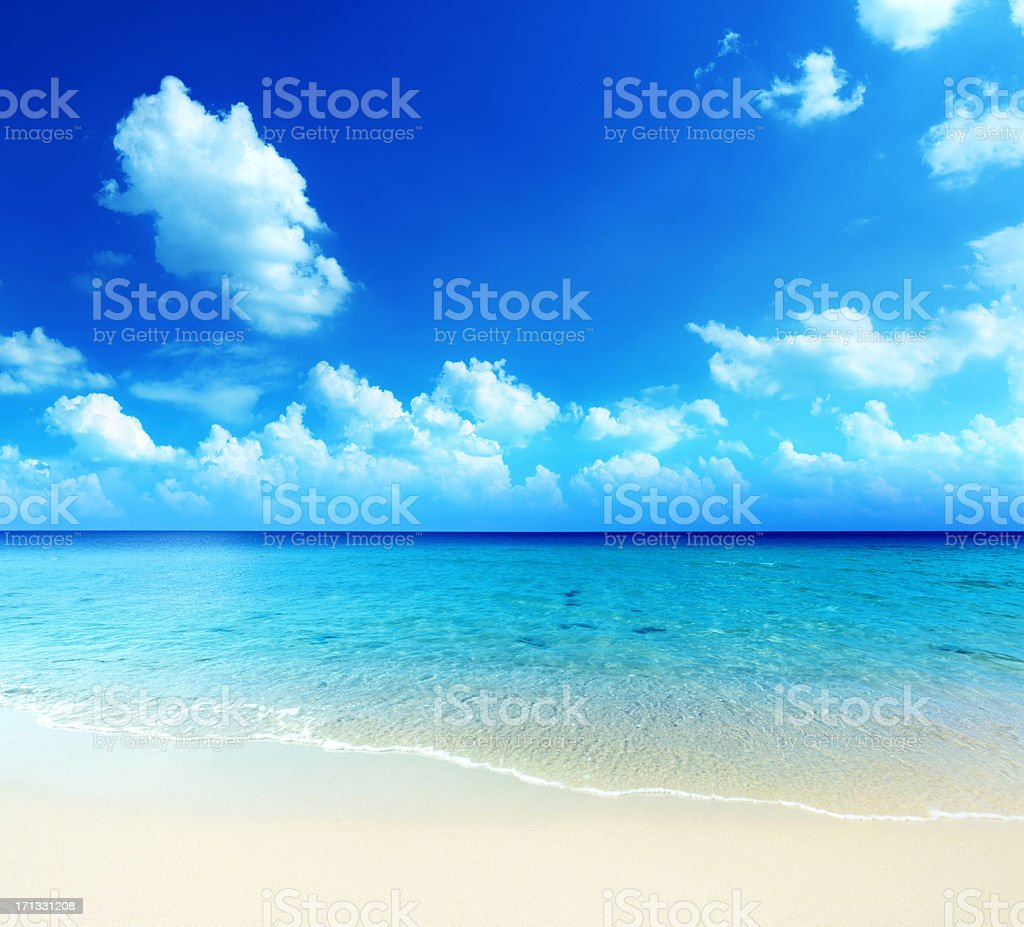 Tropical Ocean - Sandy Beach royalty-free stock photo
