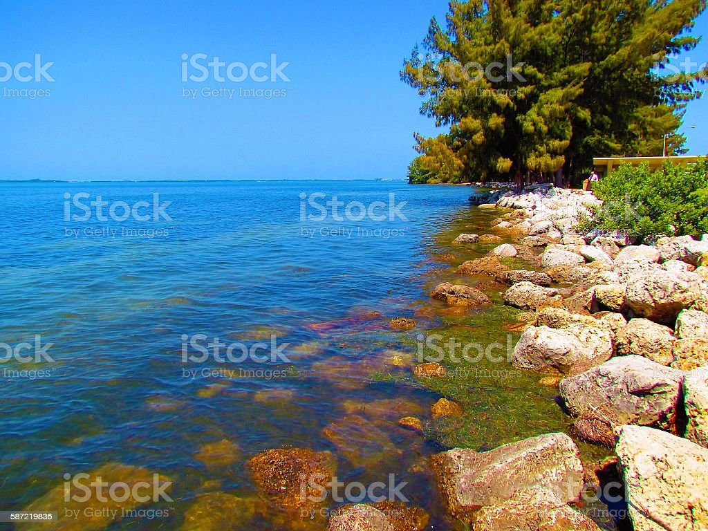 Tropical Oceanside stock photo