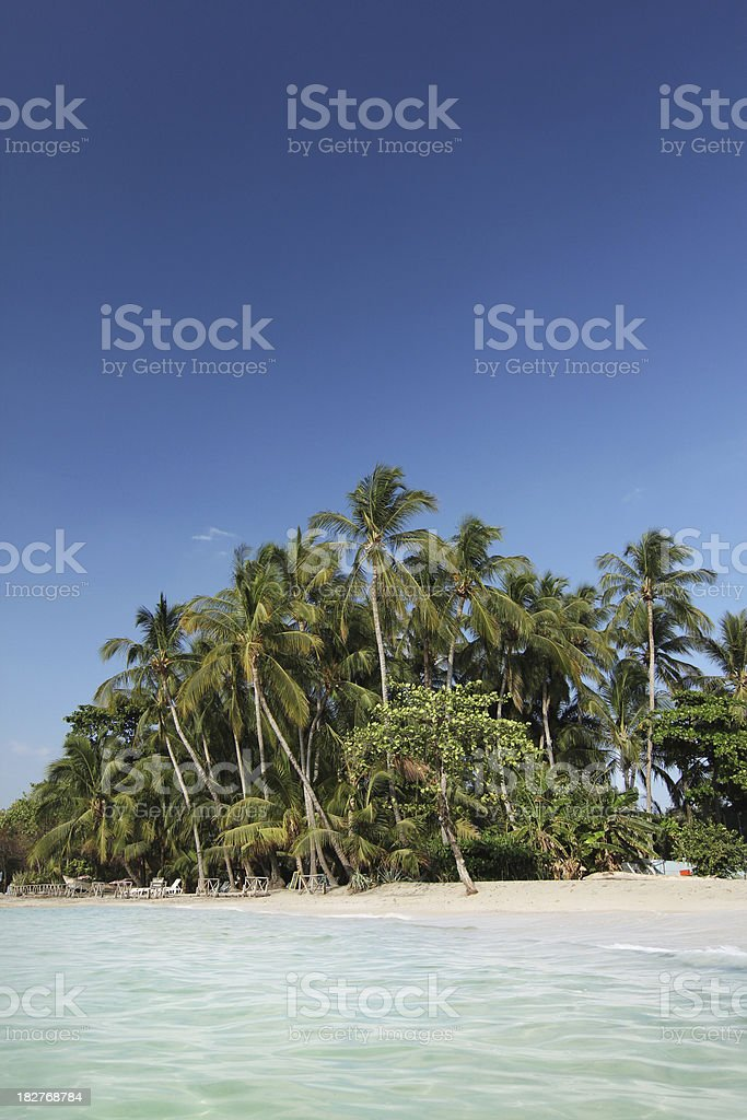 Tropical pacific beach royalty-free stock photo