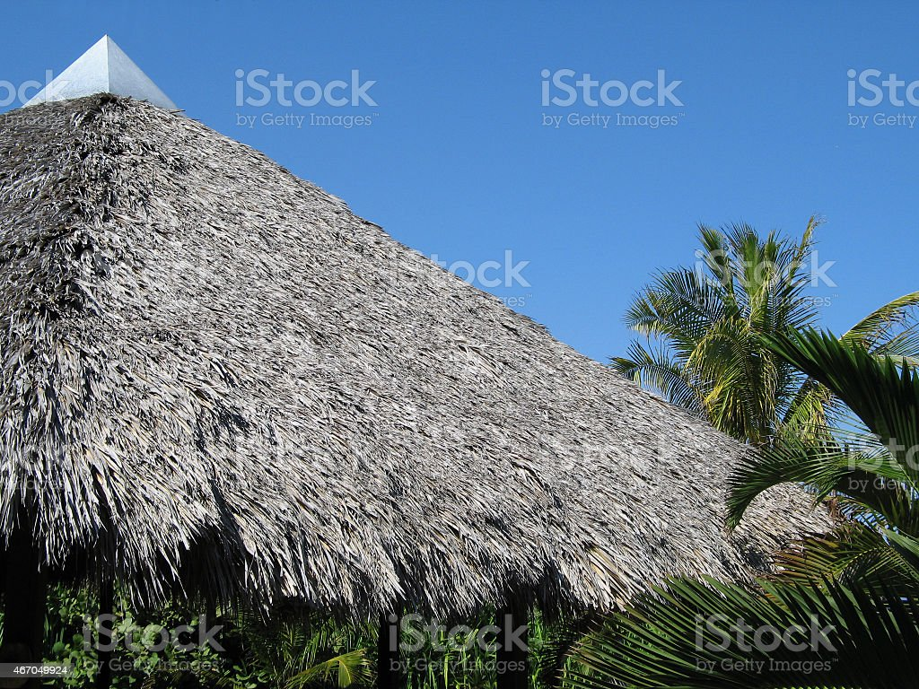 Tropical Palapa Roof stock photo