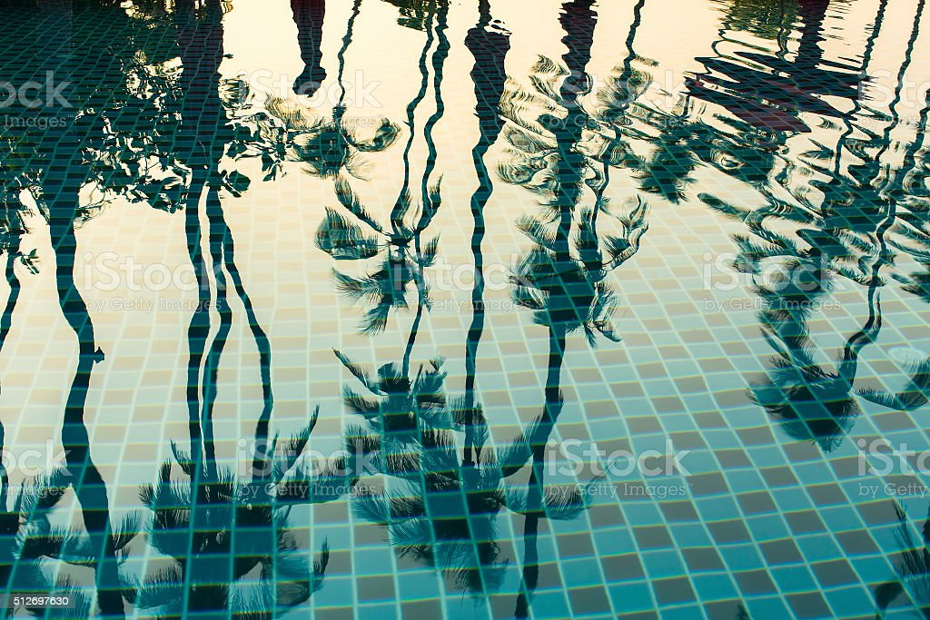 Tropical palm trees reflection in the water pool. stock photo