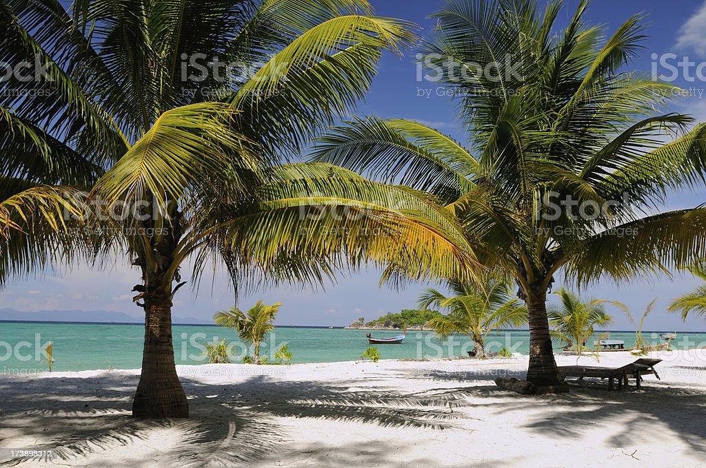 Tropical Paradise Beach royalty-free stock photo