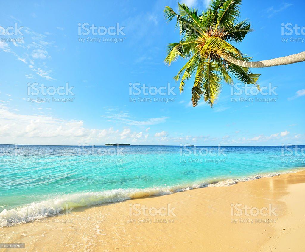 Tropical paradise beach with golden sand stock photo