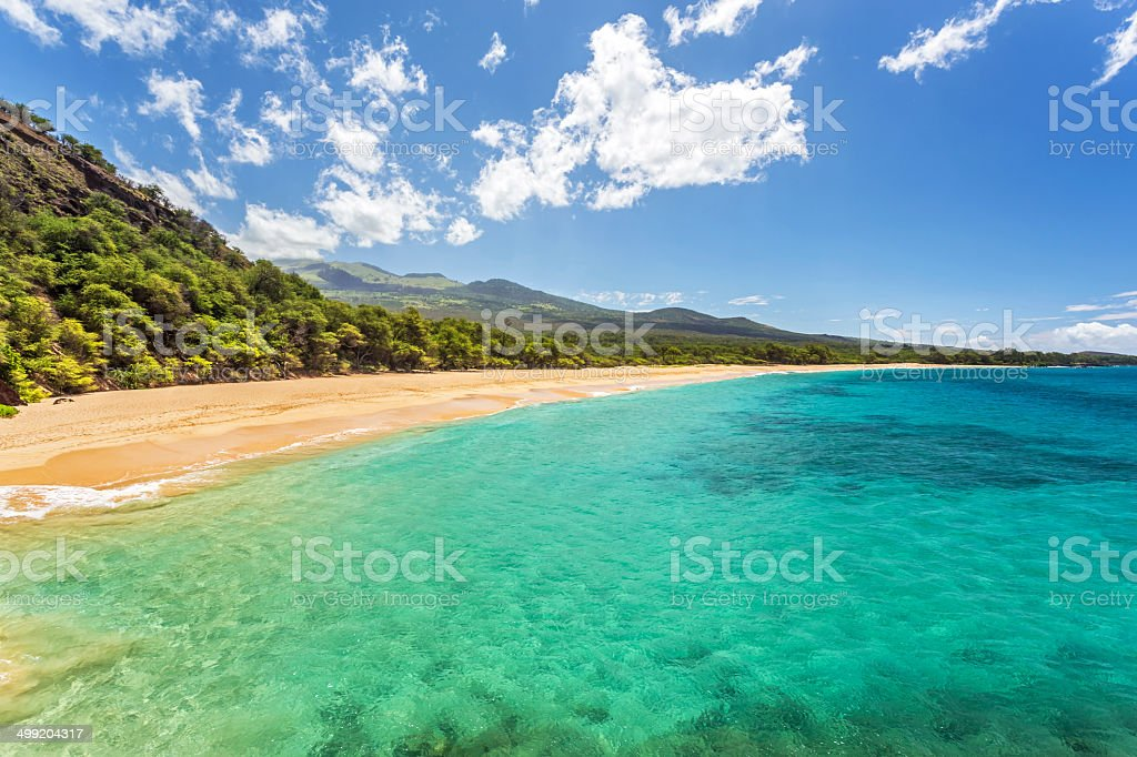 Tropical paradise found stock photo