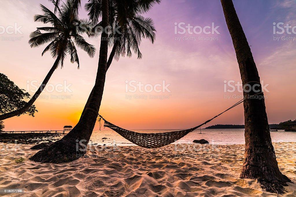 Tropical Paradise - Hammock between palm trees stock photo