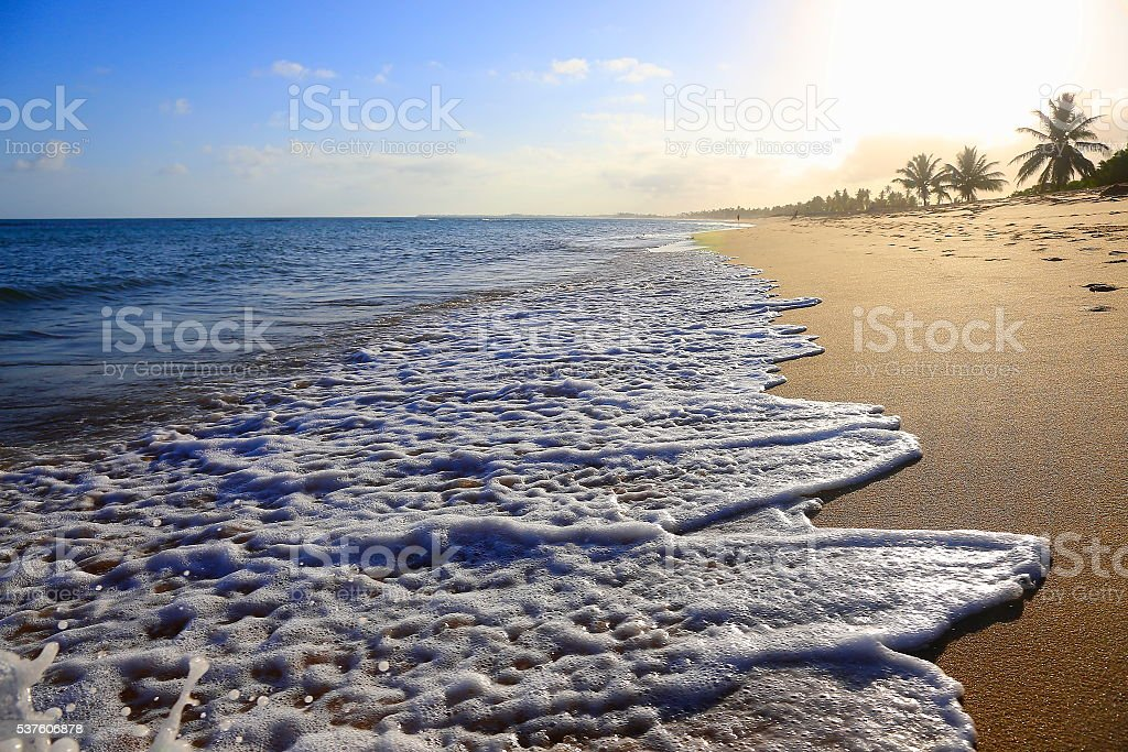 Tropical paradise: idyllic Praia do Forte beach sunset, Bahia, Brazil stock photo
